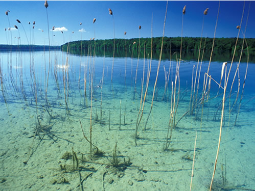 Lake Stechlin is one of the deepest and cleanest lakes in the north of Germany. © M. Feierabend